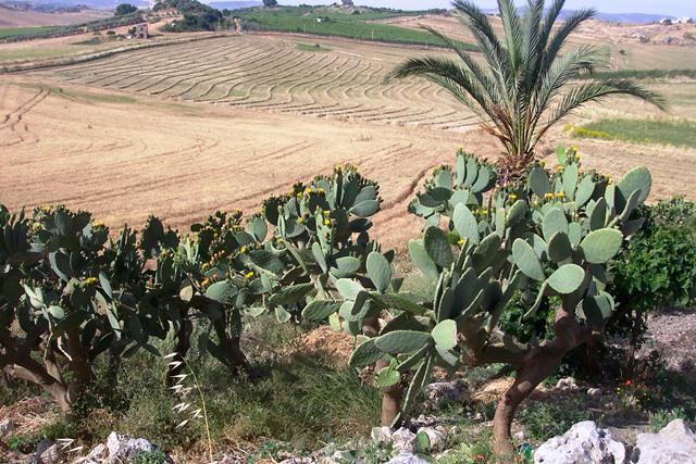 Sicilia Itália
