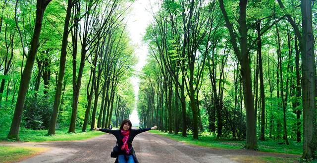 Jardins do castelo de Bruhl