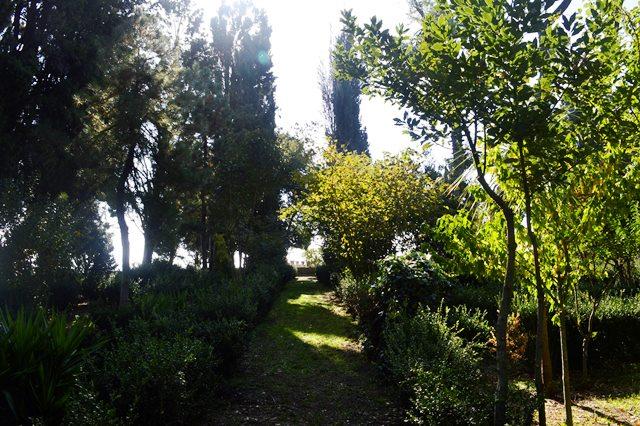 Jardim do castelo