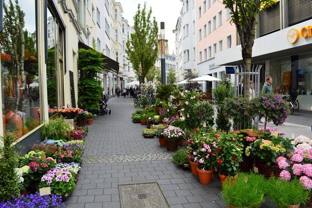 o que fazer em Bonn na Alemanha
