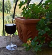 degustacao de vinhos na Toscana