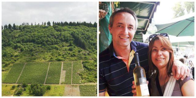 Uva Riesling - degustação de vinho na Alemanha