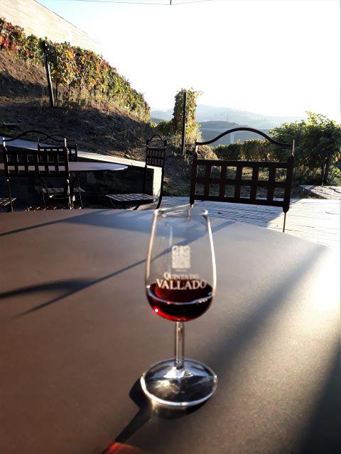 degustação de vinho no Douro
